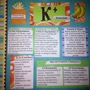 Potassium Card  Ranges  Function  Physiology  Patients At