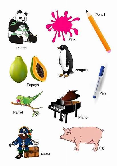 Letter Alphabet Letters English Words Word Kindergarten