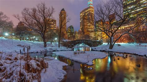 Central Park Winter Iphone Wallpaper by Wallpaper New York Central Park Snow Trees River