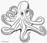 Octopus Coloring Pages Realistic Drawing Adult Printable Drawings Cool2bkids Draw Ocean Animals Vector Clip Illustrations Octopuses Getdrawings Sea Clipart Royalty sketch template