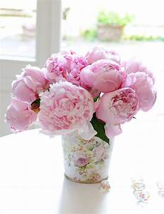 Pfingstrosen In Der Vase : rosafarbene pfingstrosen der mai und der juni sind eine wundervolle zeit denn da sind die ~ Buech-reservation.com Haus und Dekorationen