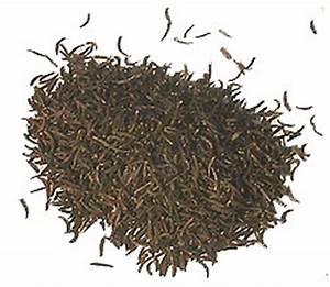 Fennel seeds - Saunf - Badi Shep