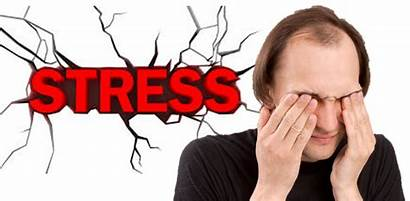 Stress Hair Loss Anxiety Cause Physical Tension