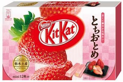 Kat Kit Japan Flavors Kitkat Japanese Every