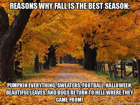 Fall Meme - reasons why fall is the best season pumpkin everything sweaters football halloween