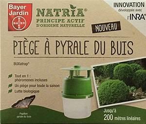 Pyrale Du Buis Traitement Bayer : bayer jardin pi ge pyrale du buis les plus beaux ~ Dailycaller-alerts.com Idées de Décoration