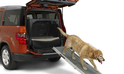 top  vehicles  dog lovers