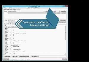 Launch a self hosted online Windows backup server platform ...