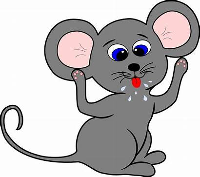Mouse Cartoon Rat Mice Clipart Clip Drawing