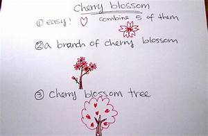 Cherry Blossom Drawing Easy | www.pixshark.com - Images ...