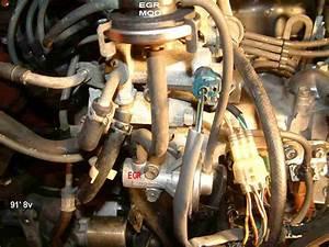 Wiring Diagram Database  Chevy 454 Belt Diagram Motorhome