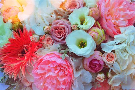 images wedding color beautiful background