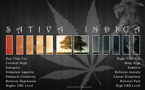sativa  indica compare weed memes weed memes