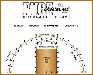 Pureshooter Net