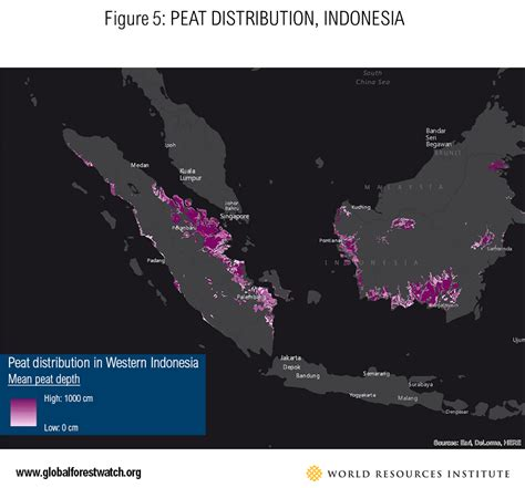 preventing forest fires  indonesia focus  riau
