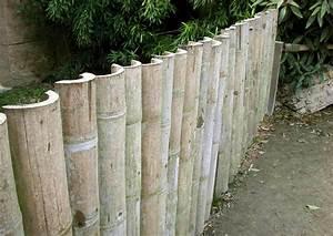 Garten Sichtschutz Bambus : sichtschutz aus bambusrohr selber bauen halbschalen und bunte dicke bambusrohe online kaufen ~ Sanjose-hotels-ca.com Haus und Dekorationen
