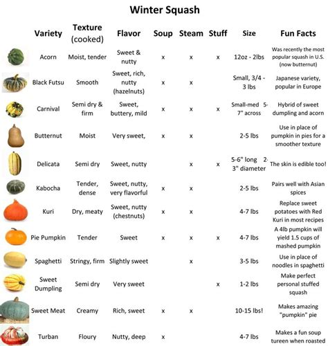 variety names squash varieties chart everyday recipes yummy recipes pinterest the o jays what is and
