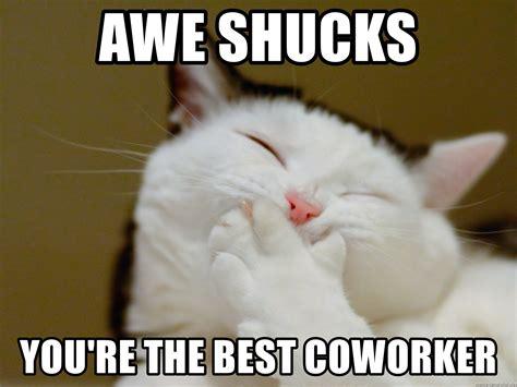 Your The Best Meme - awe shucks you re the best coworker awe shucks meme generator