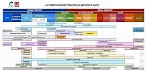 Antibiotic Spectrum Chart
