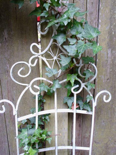 garden stuff gardening