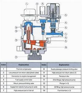 N14  N18 High Pressure Fuel Pump Teardown And Refresh