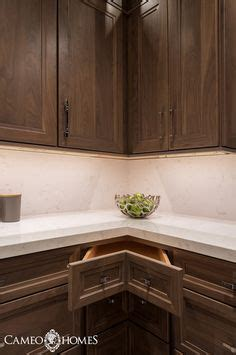 kitchen cabinet faces can t reach the items you ve stored in your kitchen 2497