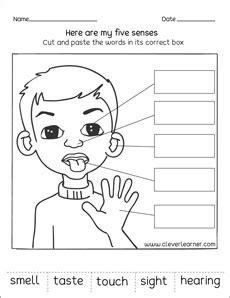 senses worksheets  preschools