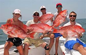 Red snapper season now open Friday-Sunday in offshore ...