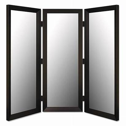 Mirror Panel Butterfield Hitchcock Hayneedle Iron Divider