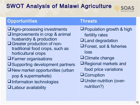strategic options  agriculture  development