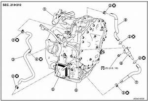 Nissan Rogue Service Manual  Water Hose - Removal And Installation