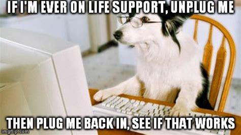 Dog On Computer Meme - dog computer imgflip