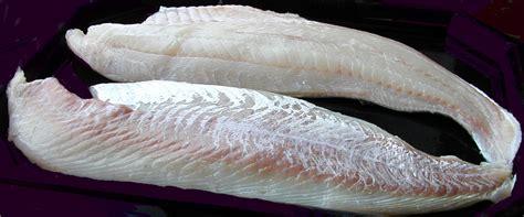 iqf slbl pollock fillets stavis seafoods