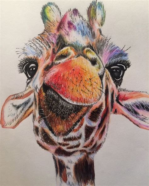 ideas  giraffe drawing  pinterest funny