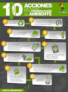 Reciclaje: 10 acciones para cuidar el ecosistema Multimedia teleSUR