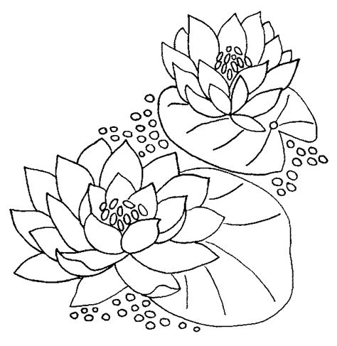 Pretty Monet Coloring Pages Water Lilies Ideas - The Best Curriculum ...