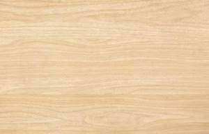 Bambizi Wood Swatch - Light Oak
