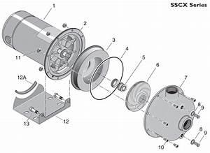 34 Paco Pump Parts Diagram