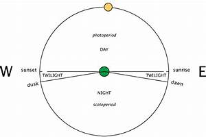 2  Diagram Showing The Apparent Path Of The Sun As Seen By