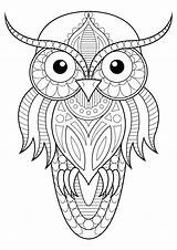 Owl Simple Patterns Coloring Owls Pages Adult Adults Animals sketch template