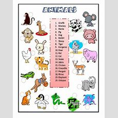 Animals The Animals Online Worksheet