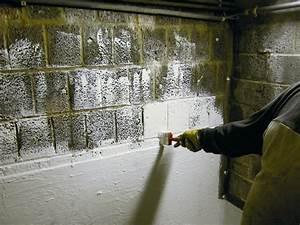 Probleme D Humidite Mur Interieur : cave humide deux traitements possibles ~ Melissatoandfro.com Idées de Décoration
