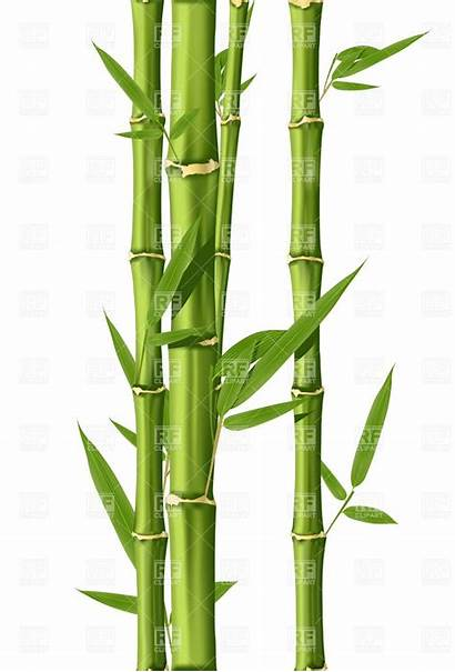 Bamboo Clip Tree Painting Plants Artist Drawing