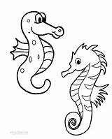 Seahorse Coloring Pages Printable Seahorses Cool2bkids Drawing Getdrawings Getcolorings sketch template