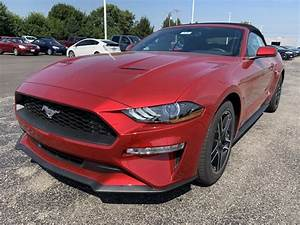 New 2020 Ford Mustang EcoBoost Premium 2D Convertible in Troy #FD10197 | Dave Arbogast