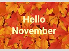 Fun Facts about the Month of November NobelCom Blog