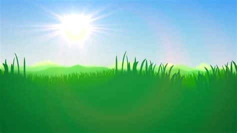 green grass field   stock footage video