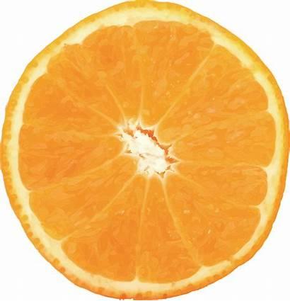 Orange Citrus Valencia Fruit Oranges Navel Lemons
