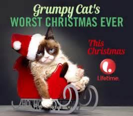 grumpy cat worst trailer for grumpy cat s worst