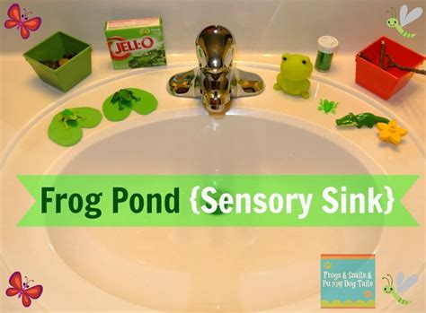 frog in the kitchen sink song 11 best images about preschool theme frogs on 8288